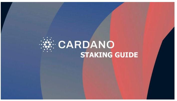 カルダノステーキング-それは何で、どのように行われますか?完全ガイド