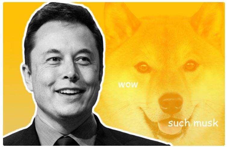 Dog Eat Dog:新しい犬のコインのためにDogeを置き去りにするElonMusk?